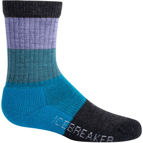 Icebreaker Hike Crew Macro Stripe Light Cushion Socks Kids orchid/blue spruce